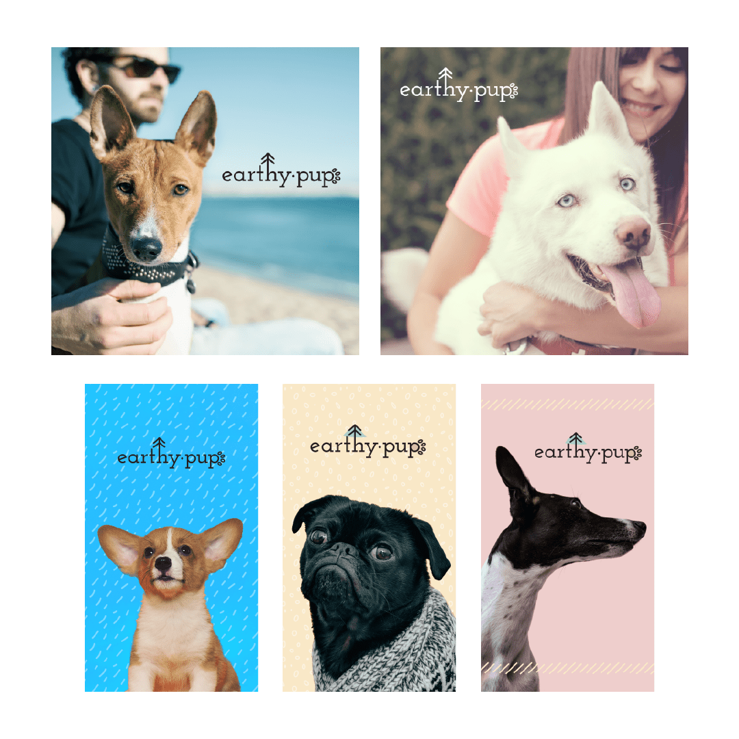 EarthyPup ad images